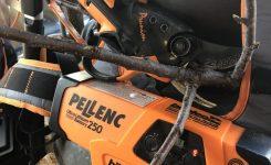 Jetzt aktuell – Akku Pellenc Baumscheren  leicht, produktiv, vielseitig € 1.200,–