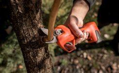 Kraftloses Bäume schneiden mit Vulcano Akku Scheren ! Äste bis 30mm Durchmesser und 6 Stunden Akku-Leistung….